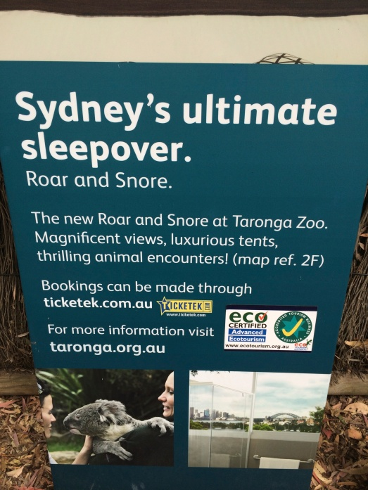 Click picture to link to my Charity Spotlight page for more information on the Taronga Zoo